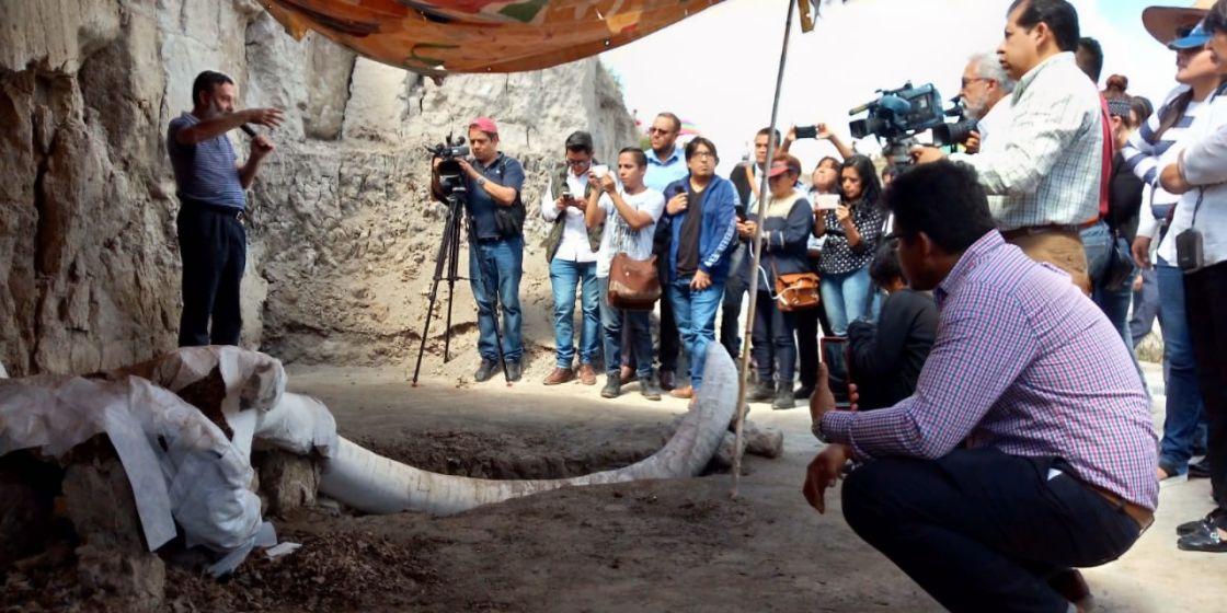 Encuentran restos de Mamuts en Tultepec